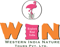 Western India Nature Tours